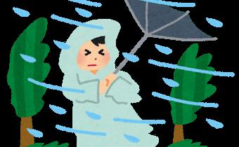 台風と暴風雨